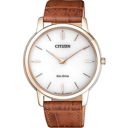 Citizen AR113315A